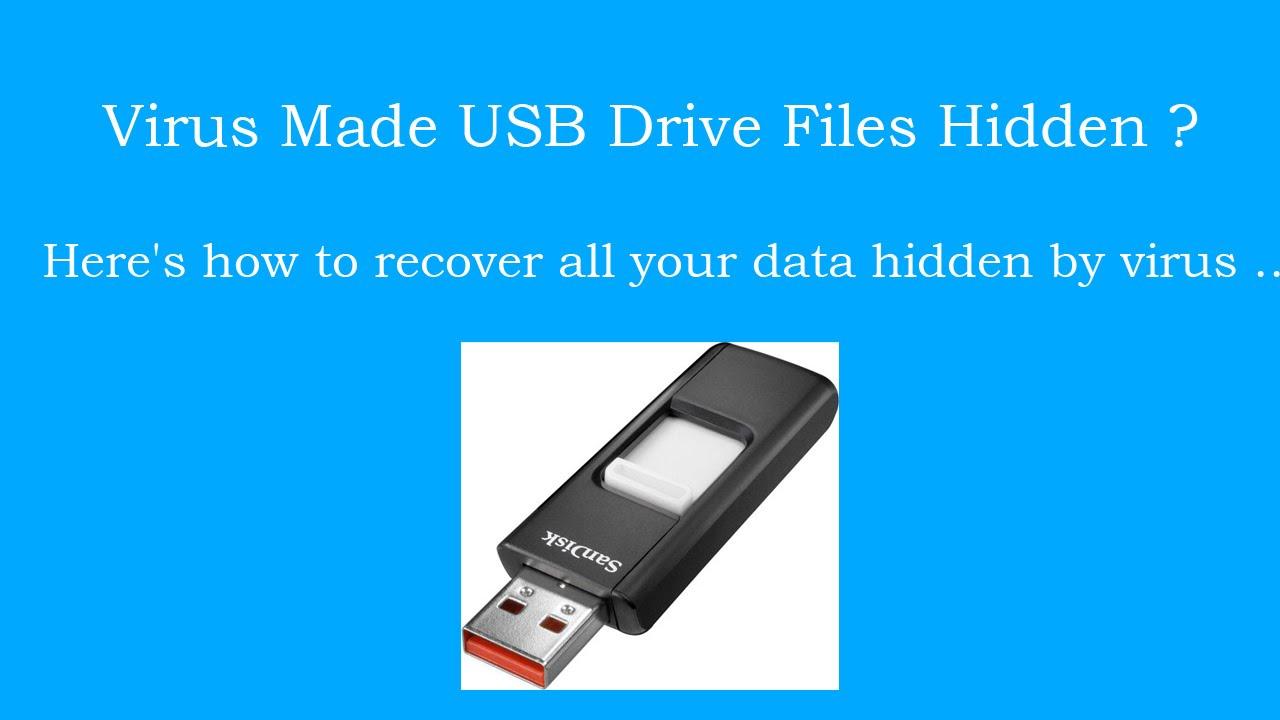 unhiding files hidden by virus